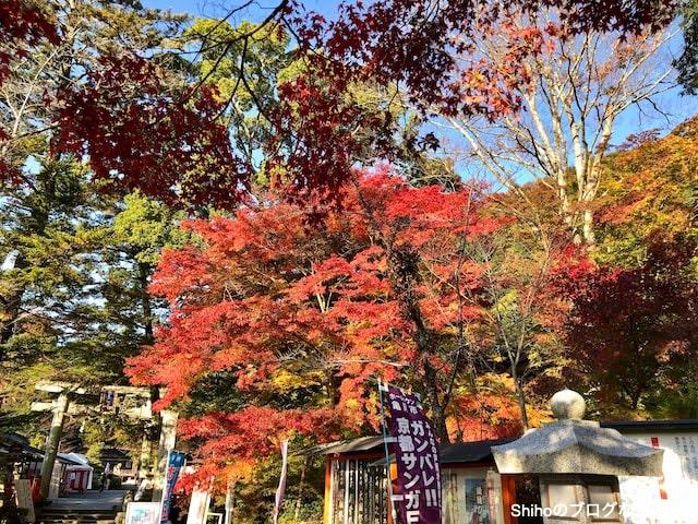 京都の紅葉で混まない穴場スポット