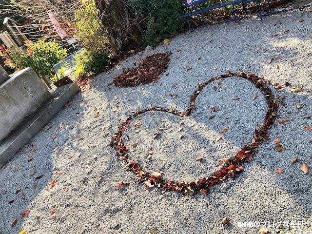 亀岡出雲大神宮の枯れ葉アート